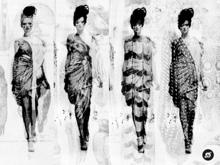 DelphinePerrot_FashionTaxidermia
